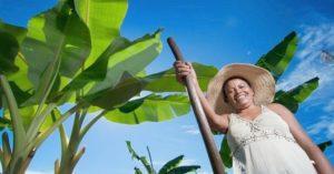 Mais presentes no agronegócio, mulheres deixam posto de 'ajudante' e assumem protagonismo em MS