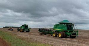 Previsão: Plantio da safrinha de milho deve cair 9% no Estado este ano