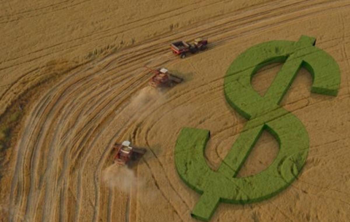 Frente Parlamentar da Agricultura: Endividamento rural é pauta prioritária do agronegócio